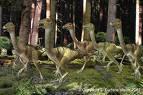 Троодон Troodon!!!