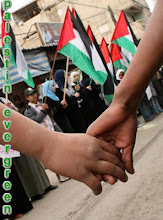 iPower PALESTINE EVERGREEN