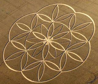 flower crop circle