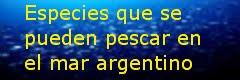 Especies en Mar Argentino