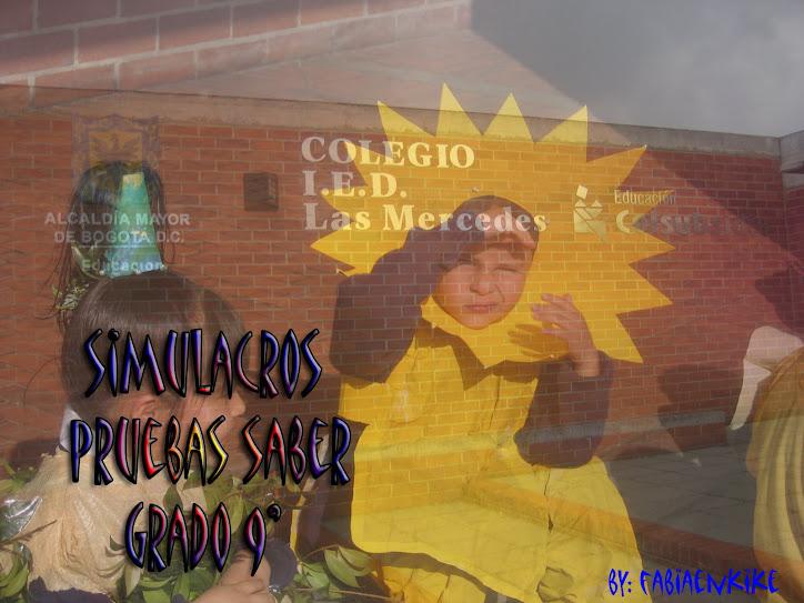 SIMULACROS PRUEBAS SABER