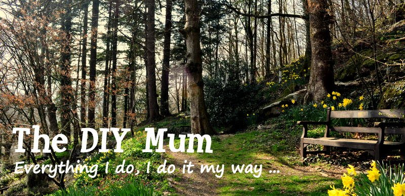 The DIY Mum