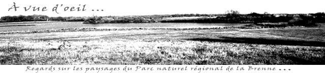 A vue d'oeil : regards sur les paysages du PNRB