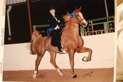 Equus Villa