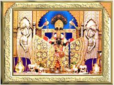 Sri sanwalia ji web site