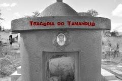 """""""Tragédia do Tamanduá"""" de George Neri"""