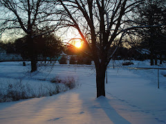 Sol e neve