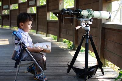 小小自然觀察家