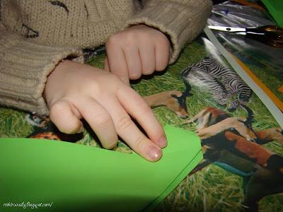 прегъвка за опашката на крокодила
