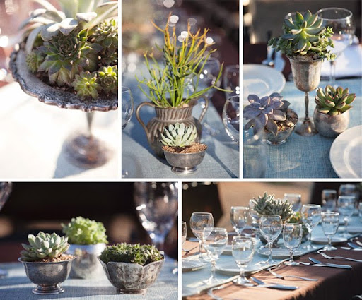 succulent table decor wedding reception
