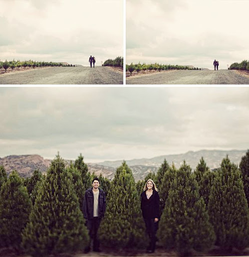 engagement photos with christmas pine trees