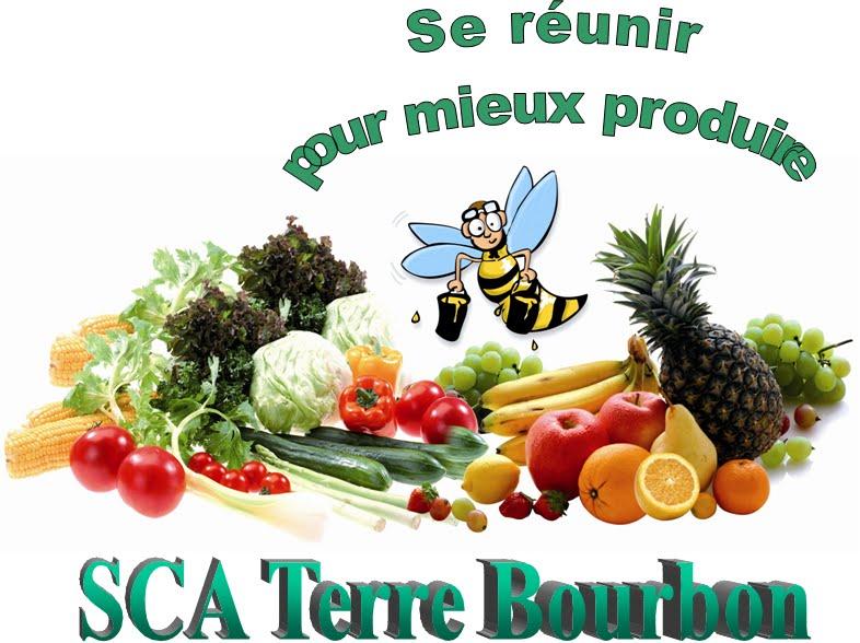 SCA Terre Bourbon