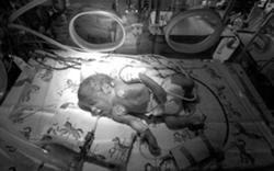 Subsídio social de maternidade e paternidade vai ter o valor de 325 euros, durante quatro meses