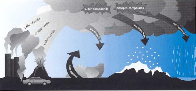 Asit+yağmuru+nedir nasıl+olur