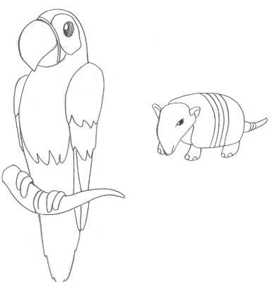 desenhos para colorir desenho de arara e tatu para pintar desenho