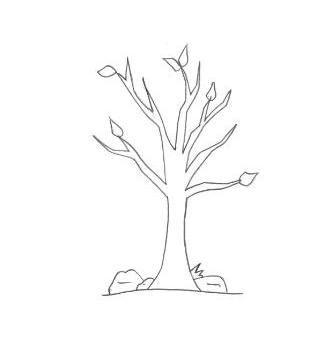 desenhos para colorir desenho de árvore sem folhas para pintar