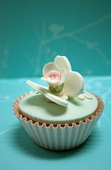 [cupcake+kylie+le+cupcake53.jpg ]