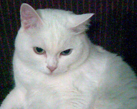 Pamuk Hanim -born in Siberia, died in Istanbul