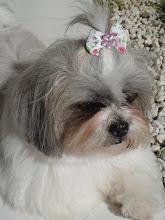 Meu xodó!!! Luly