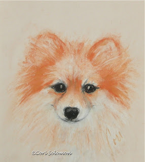 Pomeranian Bright Eyes by Cori Solomon