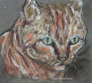 Tabby Cat Art Starry Eyes by Cori Solomon