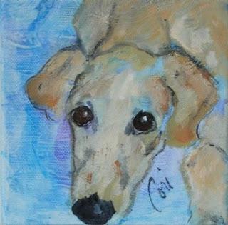Pupster - Saluki Puppy By Cori Solomon