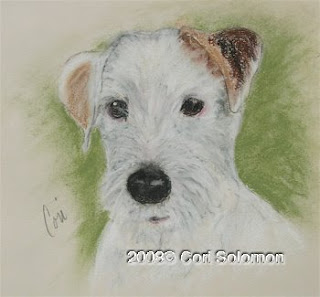 Quigley - Rough Coat Jack Russell Terrier by Cori Solomon