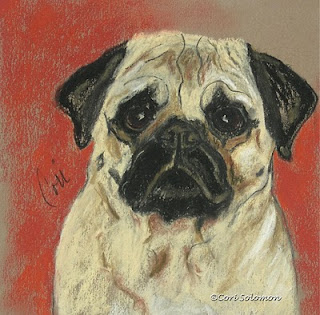 Pug Art - A Pug's Mug By Cori Solomon