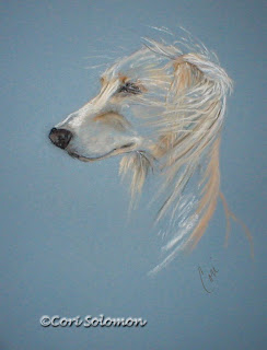 Saluki - Windhound By Cori Solomon