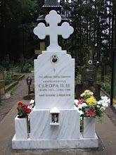 Mormantul Pr.Cleopa