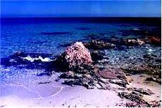 hacia esta isla partieron los primeros liberados tabarchinos