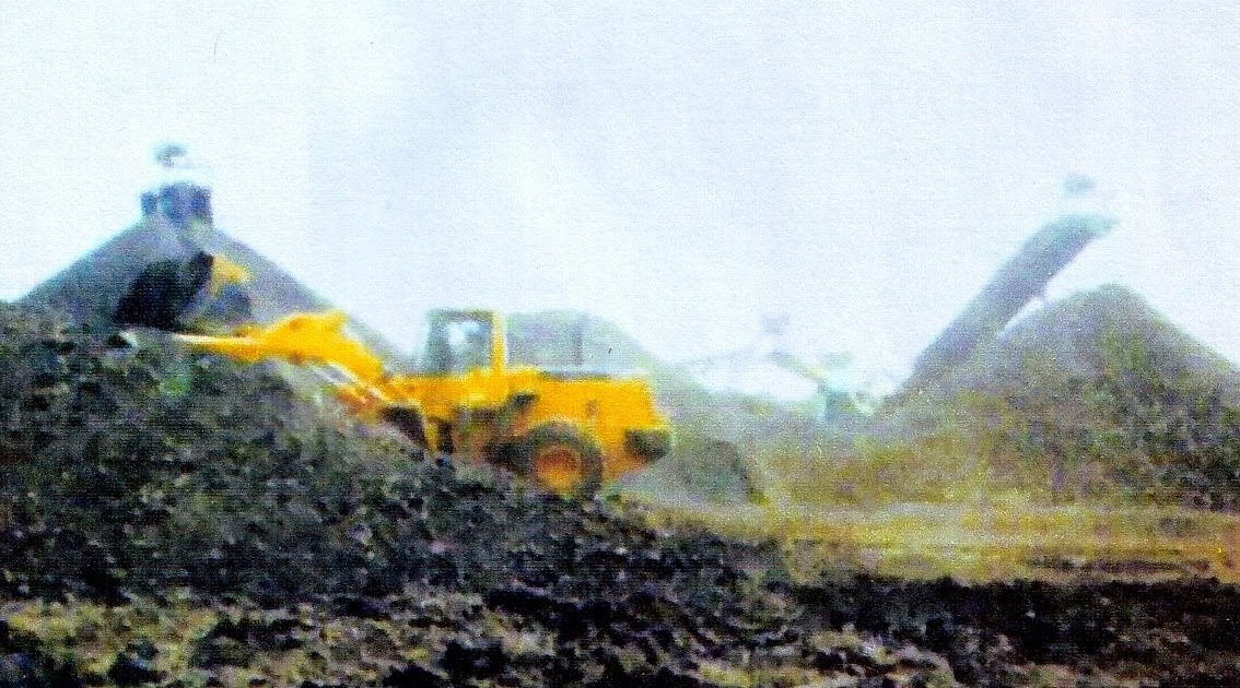 KC Thapar Group close to buying coal assets in Indonesia ...