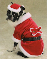 Pet dog christmas wallpapers