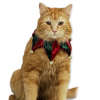 Pet Cat Wallpapers for christmas