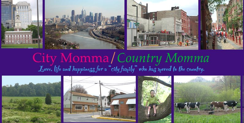 City Momma/Country Momma