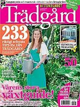 Min blogg är med i Aftonbladet Trädgård 2/4-2010