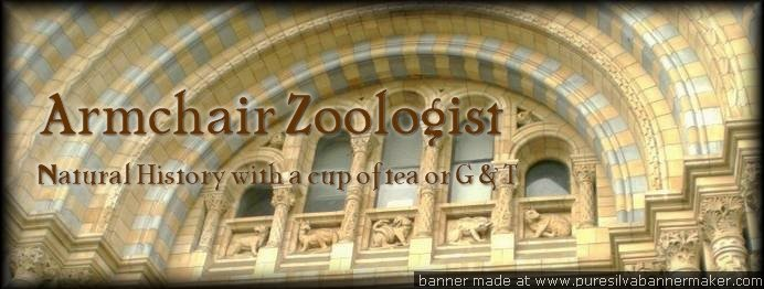 The Armchair Zoologist