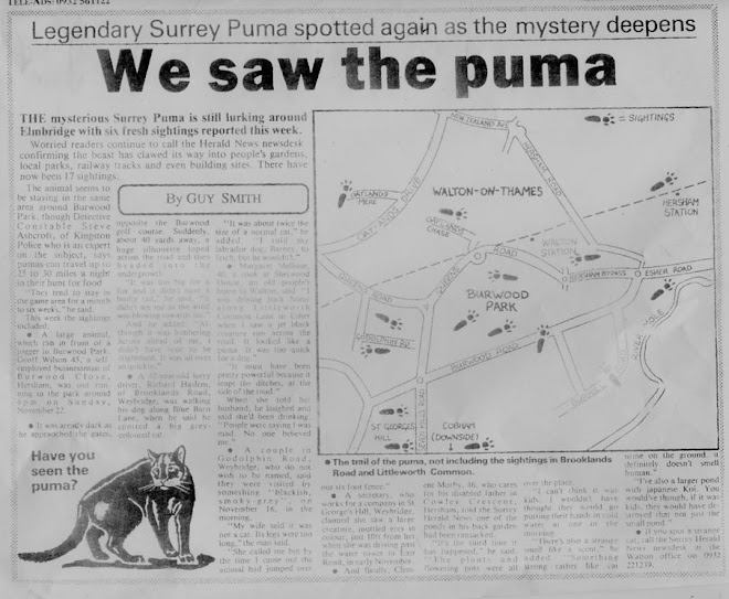 THE SURREY PUMA