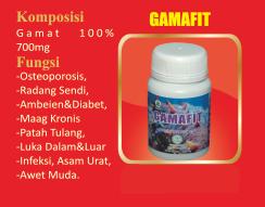 GAMAFIT
