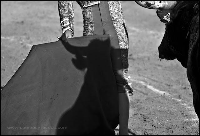Sombra en Cenicientos