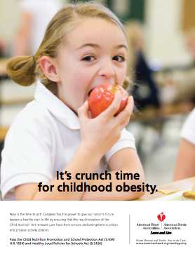 teachers role in addressing preventing obesity North carolina's plan to address obesity: healthy weight and healthy   behaviors, be role models for patients, and participate in  policies and  procedures that support students in achieving and maintaining healthy weight  teachers.