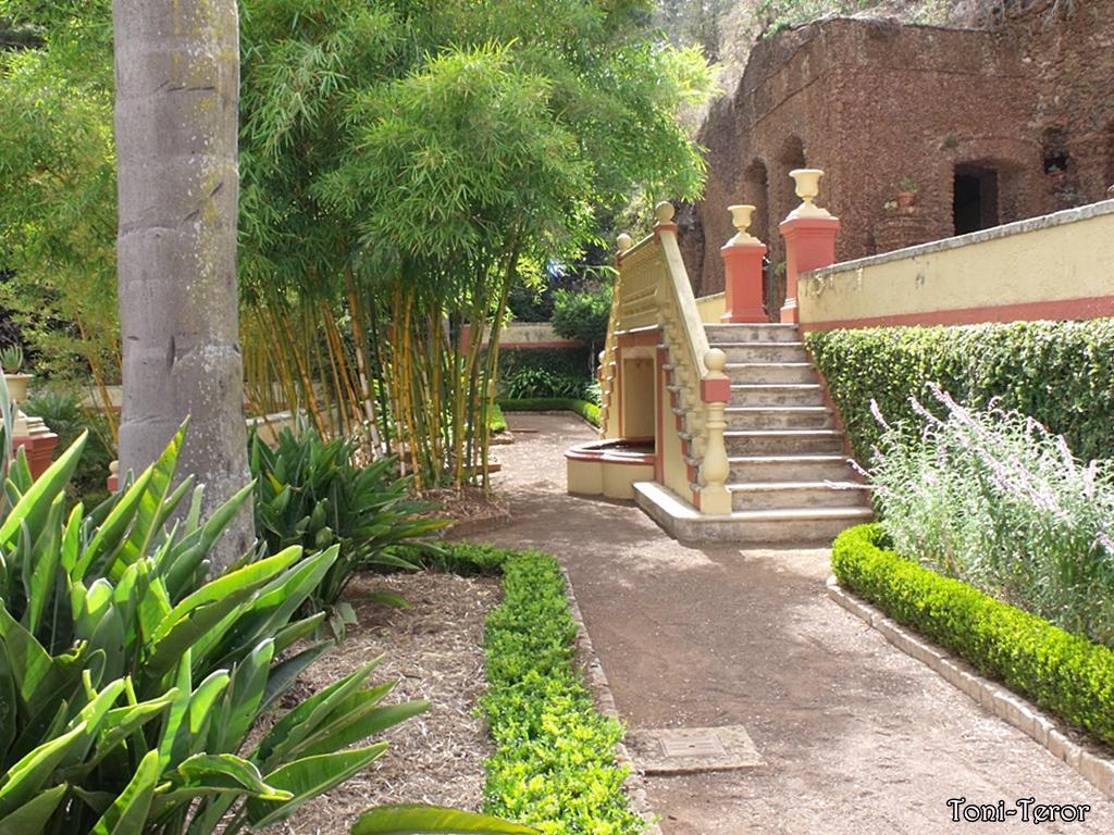 El reflejo de mi mirada escaleras del jard n for Escaleras para caminar fuera del jardin