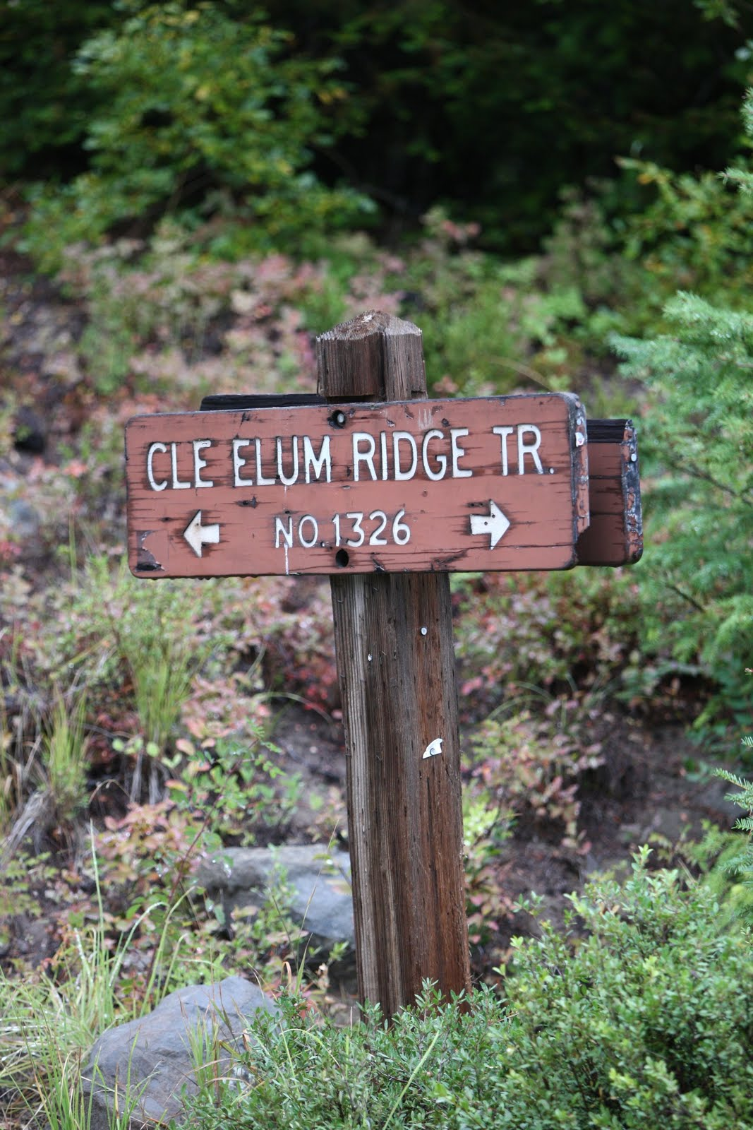 south cle elum singles Browse our south cle elum, wa single-family homes for sale view property photos and listing details of available homes on the market.