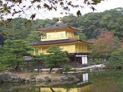 Explore Japanese Culture