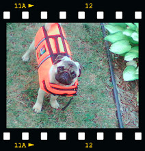 Walter does not appreciate his life vest