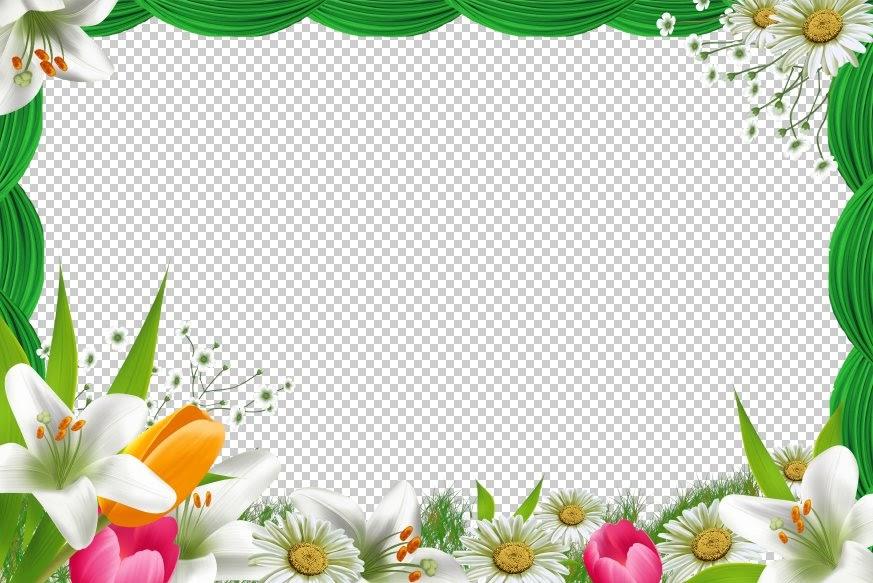 videoimagen es  plantilla de flores gratis para adobe