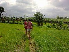[ma-ao.rice+trek]