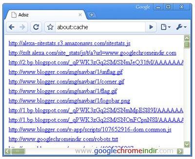 Google Chrome Ön Bellek Dosyaları