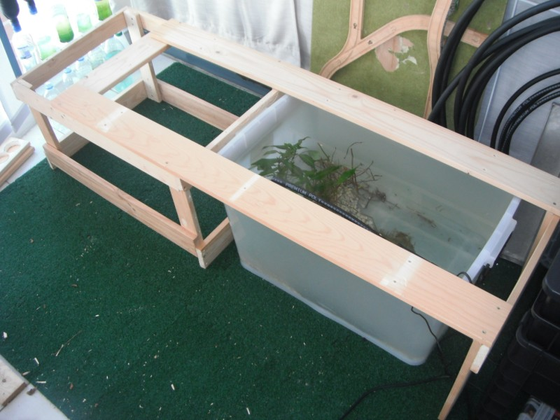 Urban green survival aquaponics for Kmart fish tank
