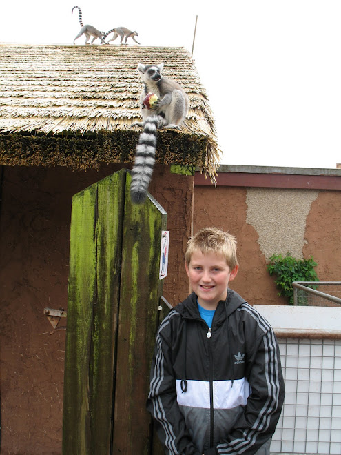 jack and Lemur at Dalton zoo